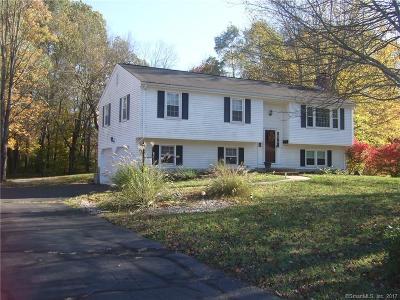 Southington Single Family Home For Sale: 79 Woodruff Street