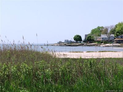 Old Saybrook Condo/Townhouse For Sale: 244 Hidden Cove Road #244