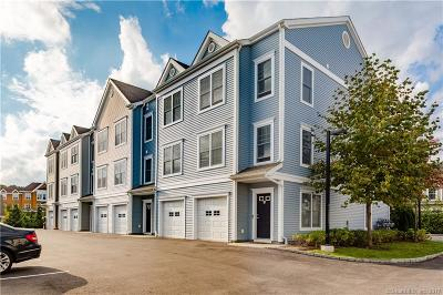 Bethel Condo/Townhouse For Sale: 203 Copper Square Drive #203