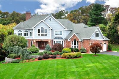 Rocky Hill Single Family Home For Sale: 71 Peria Drive