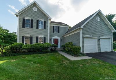 Fairfield Single Family Home For Sale: 53 Madison Hill