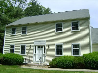 Canton Condo/Townhouse For Sale: 504 Dowd Avenue #504