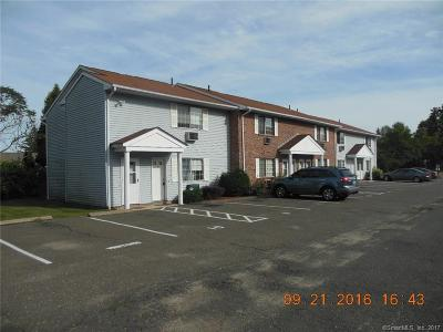 Waterbury Condo/Townhouse For Sale: 16 Lisa Court #9