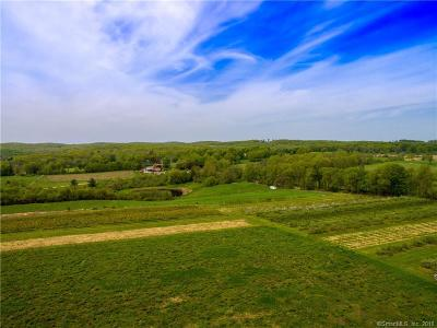Sharon Residential Lots & Land For Sale: 461 Cornwall Bridge Road