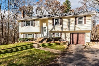 Tolland County, Windham County Single Family Home For Sale: 202 Ash Brook Drive