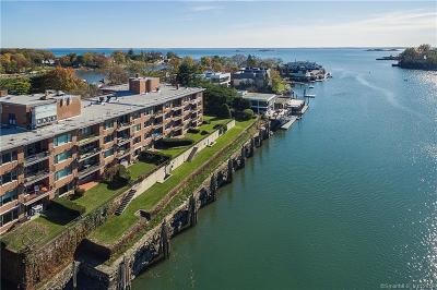 Greenwich Condo/Townhouse For Sale: 636 Steamboat Road #3ABCE