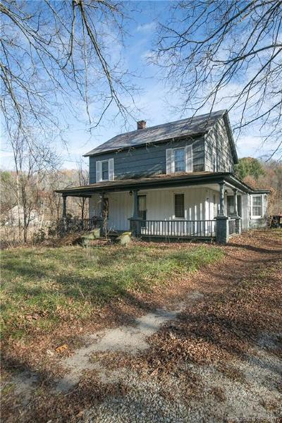 NEW MILFORD Single Family Home For Sale: 138 Litchfield Road