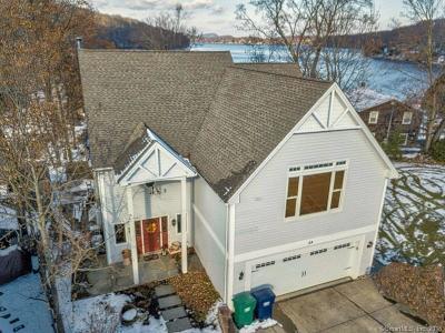 Danbury Single Family Home For Sale: 28 Circle Drive