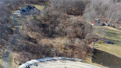 Woodbury Residential Lots & Land For Sale: 32 Birchwood Lane