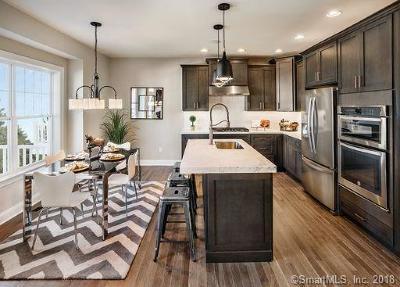 Danbury Condo/Townhouse For Sale: 91 Winding Ridge Way #62