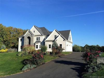 Southington Single Family Home For Sale: 21 Farmingberry Drive