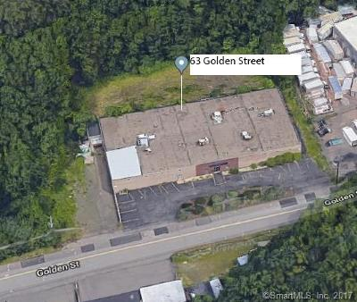 Meriden Commercial For Sale: 63 Golden Street
