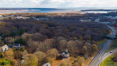 Old Saybrook Single Family Home For Sale: 220 Middlesex Turnpike