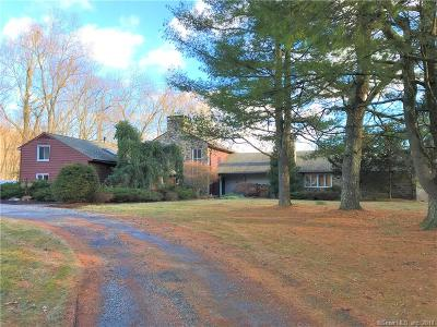 Fairfield County Single Family Home For Sale: 28 Rockledge Road