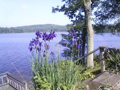 Morris Single Family Home For Sale: 19 Marsh Point