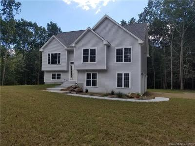 Windham County Single Family Home For Sale: 64 Lake Woods Lane