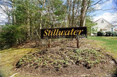 Litchfield County Condo/Townhouse For Sale: 114 Mill Lane