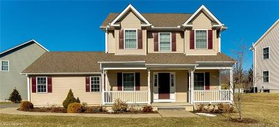Hebron Single Family Home For Sale: 39 Barber's Way #39