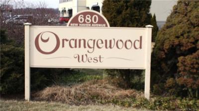 Derby Condo/Townhouse For Sale: 45 Orangewood #45