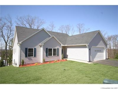 Tolland Single Family Home For Sale: 58 Belvedere Drive