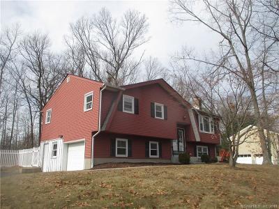 Bristol Single Family Home For Sale: 193 Illinois Avenue