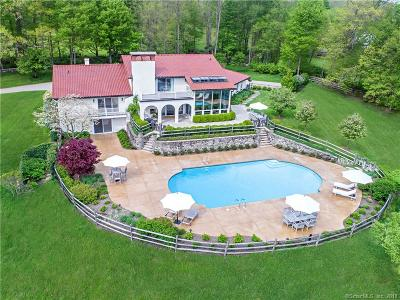 Ridgefield Single Family Home For Sale: 165 Mopus Bridge Road
