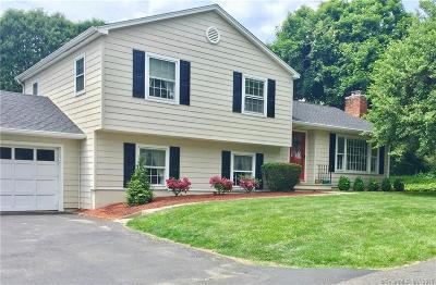 Brookfield Single Family Home For Sale: 20 Chester Street