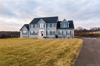 Watertown Single Family Home For Sale: 91 Windy Ridge Lane