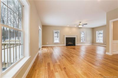Newtown Single Family Home For Sale: 66 Platts Hill Road