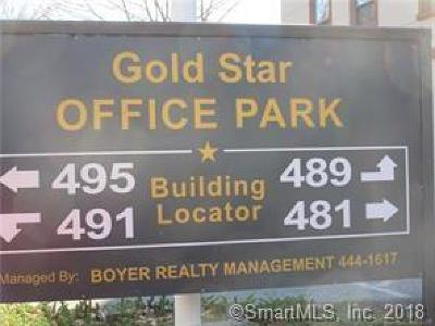 Groton Commercial Lease For Lease: 495 Gold Star Highway #301
