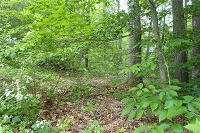 Residential Lots & Land For Sale: 100 Mountain Spring Road