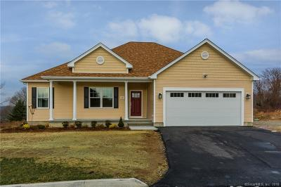 Waterford Single Family Home For Sale: 13 Sea View Terrace
