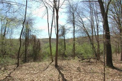 Woodbury CT Residential Lots & Land For Sale: $265,000