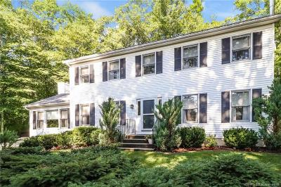 NEW MILFORD Single Family Home For Sale: 17 Norton Lane