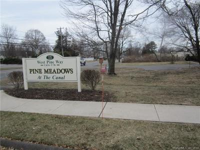 Plainville Condo/Townhouse For Sale: 15 West Pine Way #7