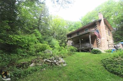 Goshen Single Family Home For Sale: 314 Sharon Turnpike