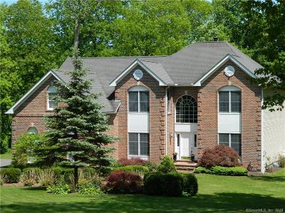 Newtown Single Family Home For Sale: 28 Equestrian Ridge
