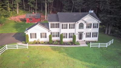 Southington Single Family Home For Sale: 2132 Mount Vernon Road