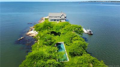 Branford Single Family Home For Sale: Potato Island