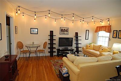 New Canaan Condo/Townhouse For Sale: 202 Park Street #15