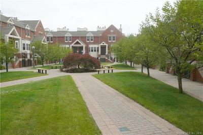 New Haven Condo/Townhouse For Sale: 95 Audubon Street #314