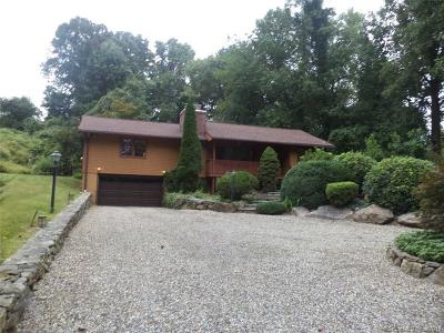 Fairfield County Single Family Home For Sale: 103 High Ridge Road