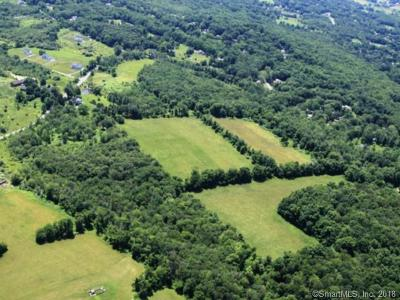New Milford Residential Lots & Land For Sale: Rt 109 Chestnut Land Road