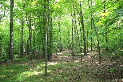 Wilton Residential Lots & Land For Sale: Mountain Road