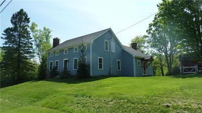 Torrington Single Family Home For Sale: 236 Rossi Road