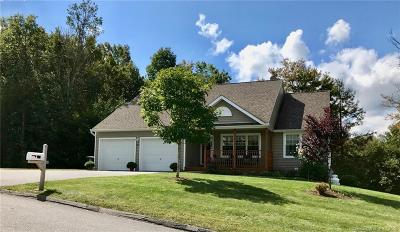 Torrington Single Family Home For Sale: 367 White Pine Road