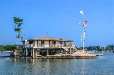 Branford Single Family Home For Sale: Jepson Island