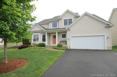 Danbury Single Family Home For Sale: 9 Tobins Court #9