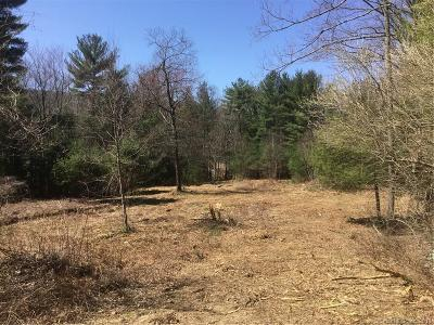 Woodstock Residential Lots & Land For Sale: 00 Route 197
