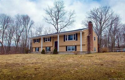 Watertown Single Family Home For Sale: 96 Jericho Road